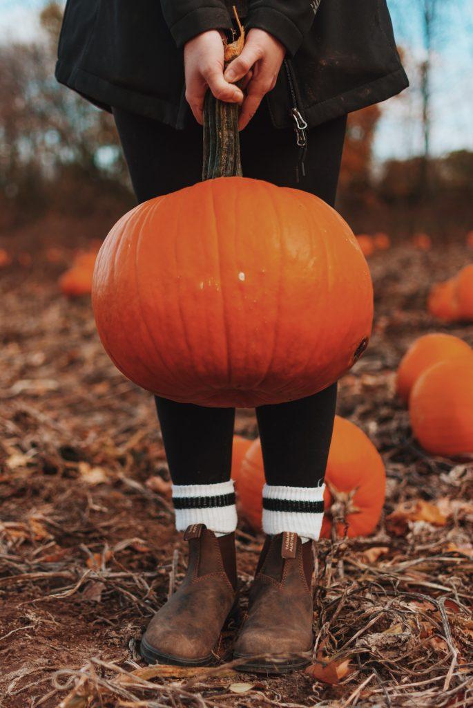 Jack O Lantern Pumpkin - All Hallows' Eve